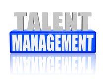 Gestión del talento en las letras 3d y bloque Fotografía de archivo libre de regalías