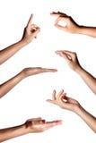 Gesti di mano femminili multipli isolati sopra i precedenti bianchi, insieme delle immagini multiple immagini stock libere da diritti