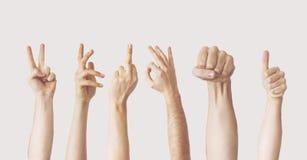 Gesti di mano femminili multipli su fondo grigio fotografia stock