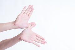 Gesti di mano quali gli uccelli di volo su un fondo bianco immagini stock libere da diritti