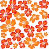 Gestickte rote orange Blumen auf nahtlosem Klaps des weißen Hintergrundes Lizenzfreie Stockfotografie
