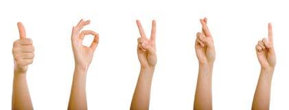 Gesticulando as mãos Foto de Stock Royalty Free