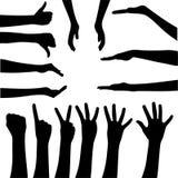 Gesticulando as mãos Fotografia de Stock