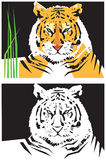 Gestileerde beelden van tijger Royalty-vrije Stock Foto's