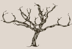 Gestileerde Geïllustreerdee hand getrokken dode boom Stock Afbeeldingen
