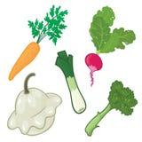 Gestileerde groenten. Royalty-vrije Stock Foto's