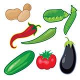 Gestileerde groenten. Stock Foto's