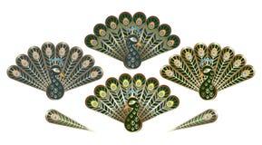 Gestileerde pauwen met luxueuze staarten Stock Afbeeldingen
