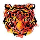 Gestileerde tijgersnuit stock illustratie