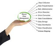 Gestion des données principale Image stock