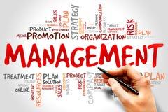 gestione Fotografie Stock