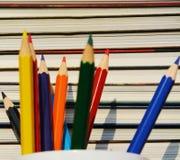 Gestione bibliotecaria, fine su Fotografie Stock Libere da Diritti
