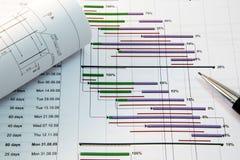 Gestione di progetti Immagine Stock