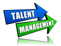 Gestione di talento in frecce Fotografie Stock Libere da Diritti