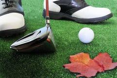 Gestionnaire et chaussures de bille de golf images stock