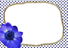 Gestippeld kader met blauwe bloem stock fotografie
