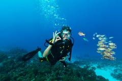 Gesto APROVADO da exibição do mergulhador de mergulhador da jovem mulher imagem de stock
