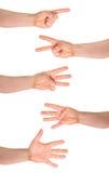 Gesto de mão da contagem de um a cinco dedos isolado Imagem de Stock