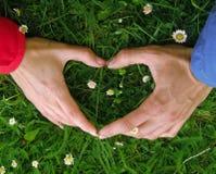 Gesto de mão sob a forma do coração no fundo da grama com flores Imagens de Stock