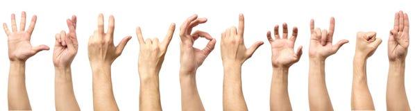 Gesto di mano maschio e raccolta del segno isolata sopra backgr bianco Immagine Stock Libera da Diritti