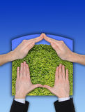 Gesto ecológico del hogar de la mano en el cielo azul Imagenes de archivo