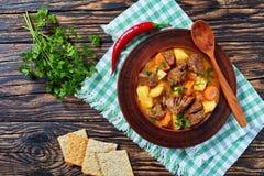 Gestoofd rundvlees met aardappel en wortelen stock foto