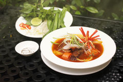 Gestoofd Saigonrundvlees (kho BÃ ²) Royalty-vrije Stock Fotografie