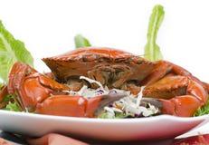 Gestoomde bruine krab Stock Foto