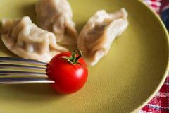 Gestoomde Chinese jiaozi met tomaat Royalty-vrije Stock Foto's