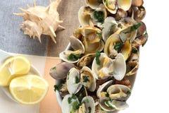 Gestoomde die tweekleppige schelpdieren met olijfolie, knoflook en peterselie -peterselie-medite worden gekruid royalty-vrije stock foto's