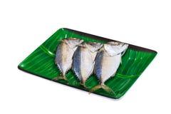 Gestoomde die vissen op Witte achtergrond worden geïsoleerd Stock Afbeelding