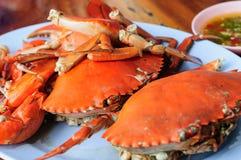Gestoomde Krabbenen met Thaise kruidige zeevruchtensaus stock afbeelding
