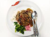 Gestoomde rijst en geroosterde eend Royalty-vrije Stock Foto