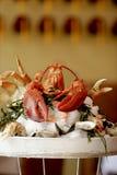 Gestoomde Zeekreeft en zeevruchten pl Stock Afbeelding