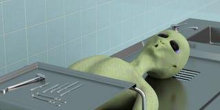 Gestorven vreemdeling in het laboratoriumclose-up Stock Foto