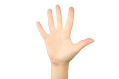 Gestos de mão fêmeas, fim acima Imagens de Stock