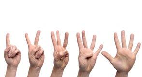 Gestos de mão que contam 1 a 5 Imagens de Stock Royalty Free