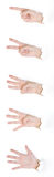 Gestos de mano en blanco Fotografía de archivo libre de regalías