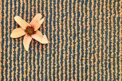 Gestreept patroon met bloem royalty-vrije stock foto