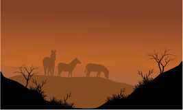 Gestreept silhouet in heuvels Royalty-vrije Stock Foto's