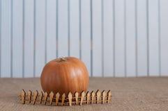 Gestreepte pompoen achter stuk speelgoed houten omheining E Royalty-vrije Stock Foto
