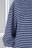 Gestreepte sweater met bergkristallen royalty-vrije stock foto