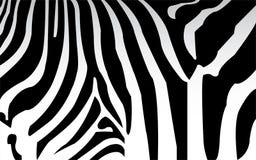 Gestreepte Zwart-witte textuur stock illustratie