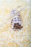 Gestreifte Waffeln rollt mit der Schokolade gebundenen Aderpresse, die auf St. liegt Stockbilder