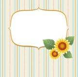 Gestreifter Hintergrund der Sonnenblume Lizenzfreie Stockfotos