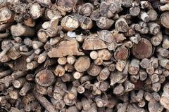 Gestreiftes Bauholz der Art, das wartet gebrannt zu werden kraftstoff lizenzfreie stockfotos