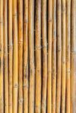 Gestreiftes Muster des nahtlosen Bambusstockes Lizenzfreies Stockbild
