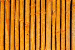 Gestreiftes Muster des nahtlosen gelben Bambusstockes Lizenzfreie Stockfotos