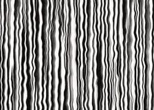 Gestreiftes Zebra fiel Hintergründe Lizenzfreies Stockbild