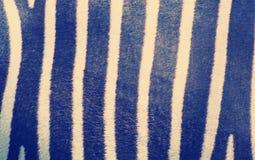 Gestreiftes Zebrahautmuster Stockbilder